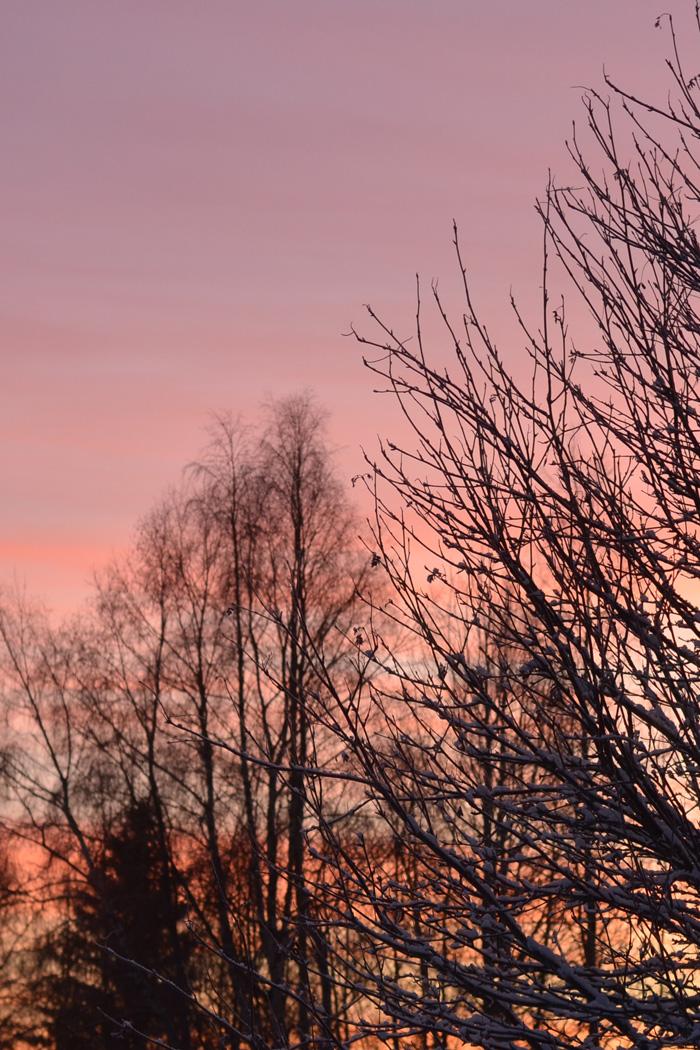 solnedgång december