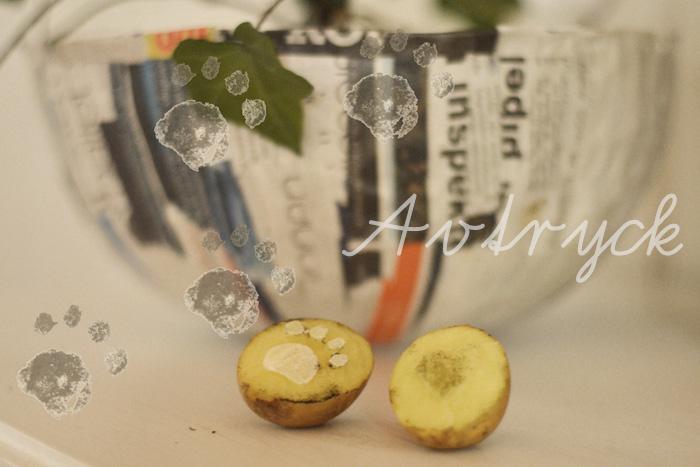 avtryck potatistryck