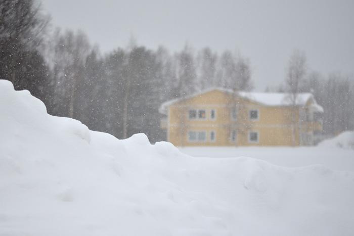 Snöig februaridag