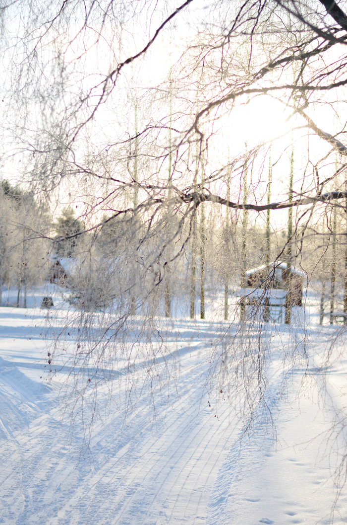 vinterbilder februari