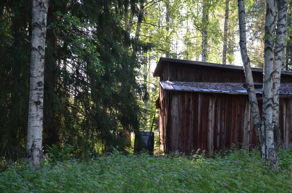 Öde gård
