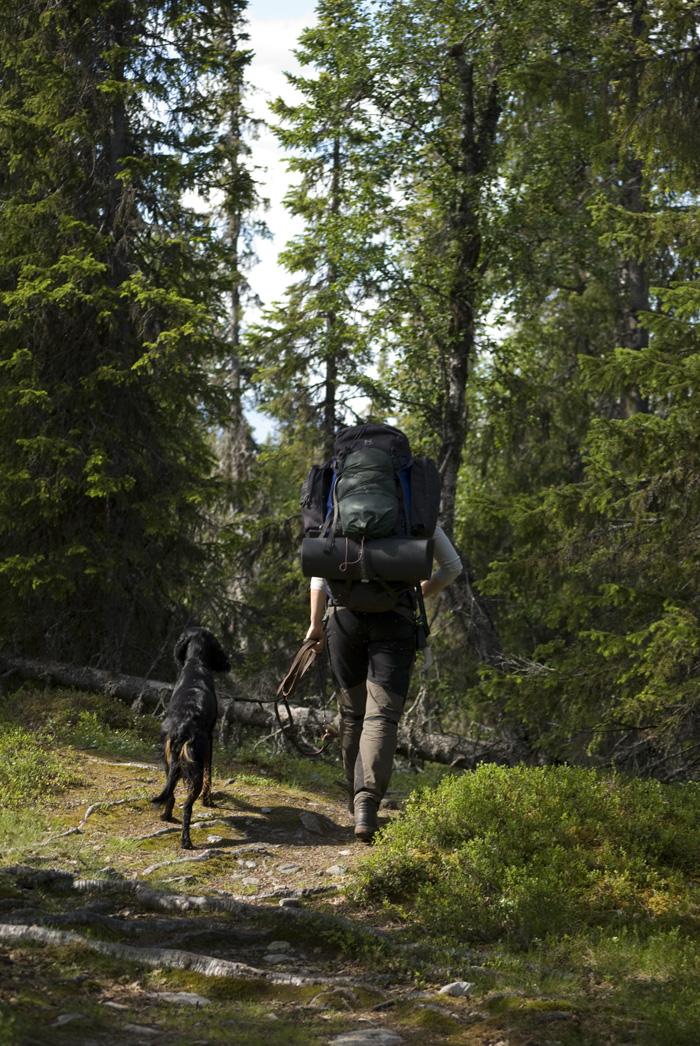 fjällvandring vandrare