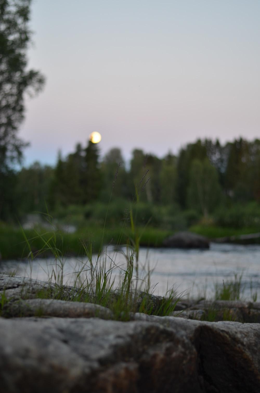 fullmåne vid forsen