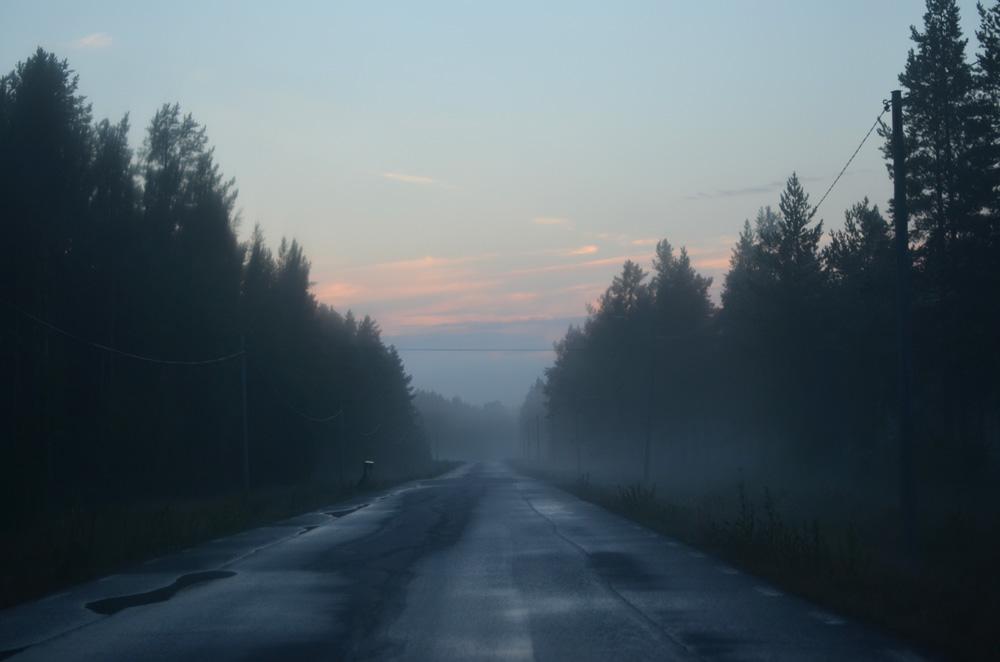 sommarnatt dimma