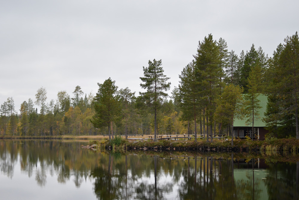 stuga vid fiskesjö