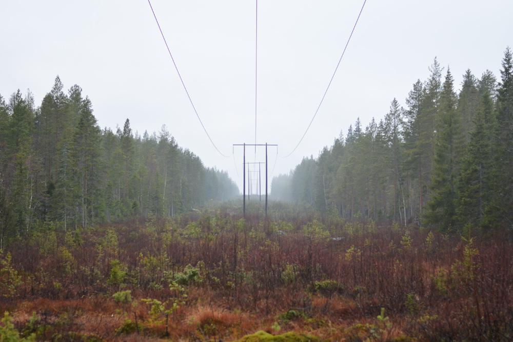 dimma-kraftledning