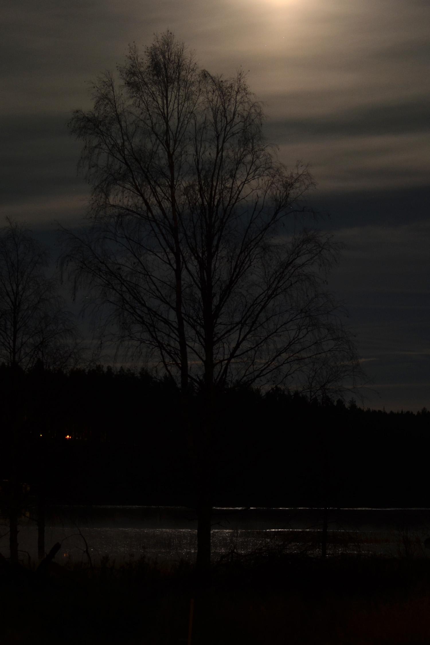 natten-och-manen