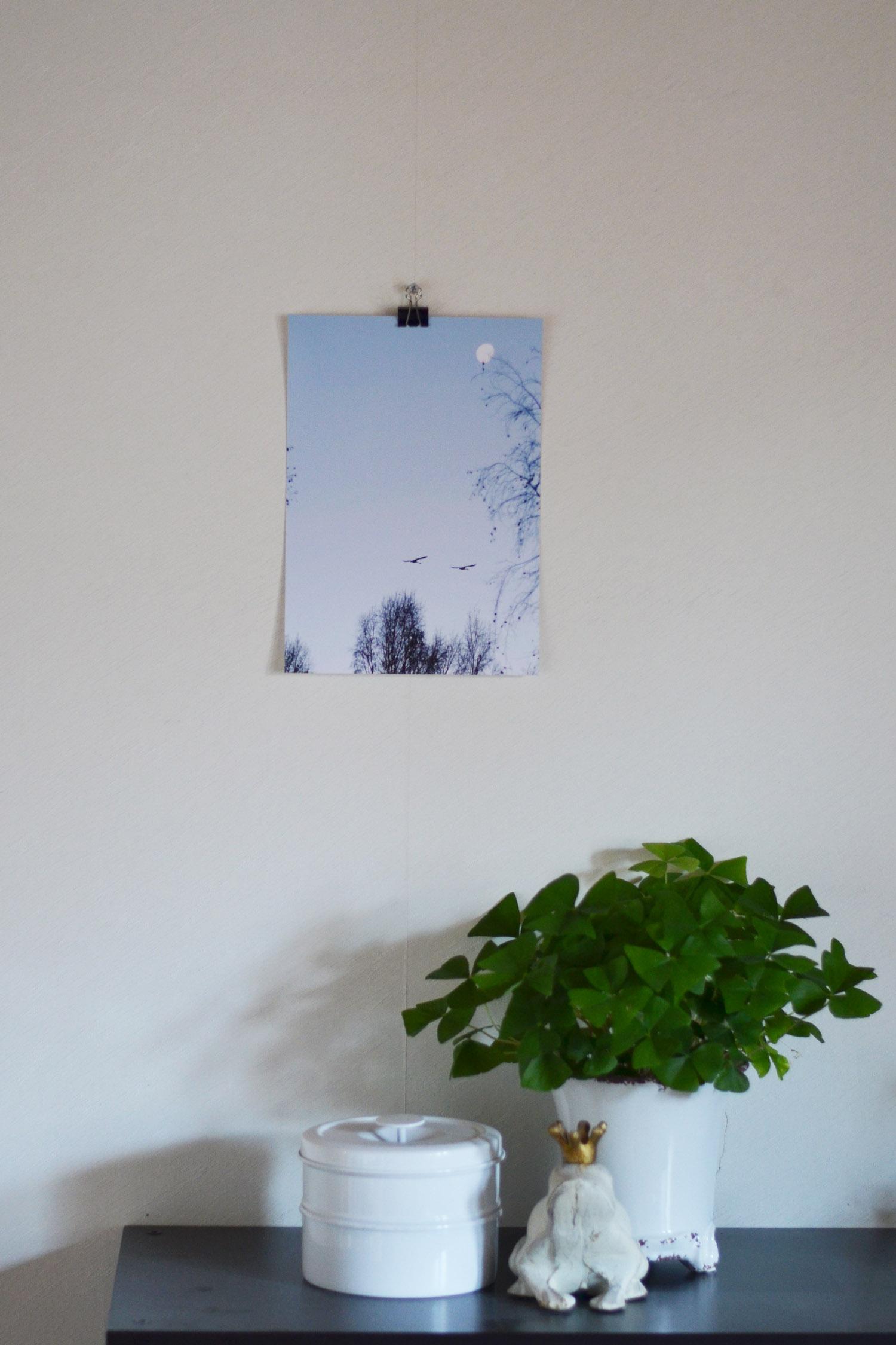 svanprint