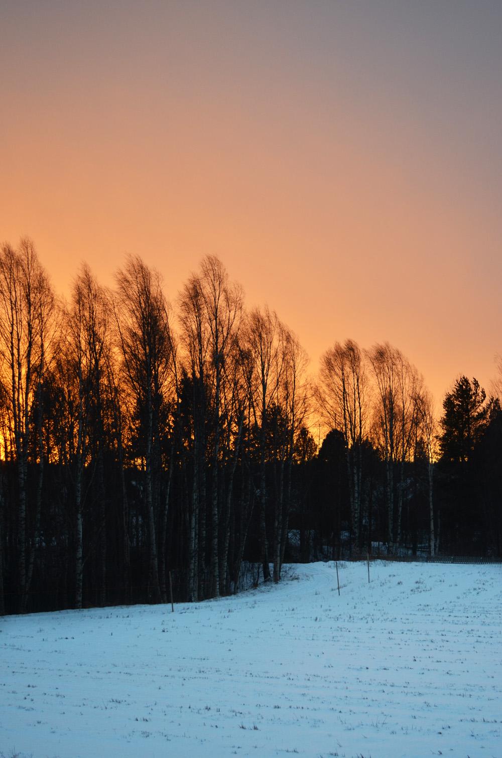 solnedgang-november-2