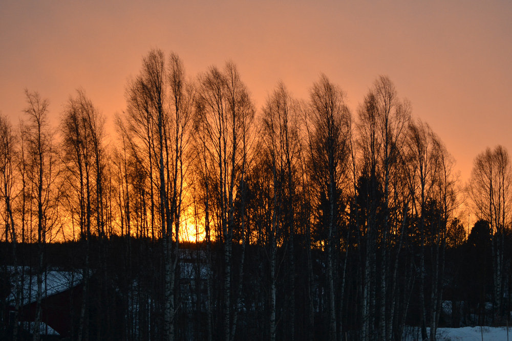 solnedgang-november