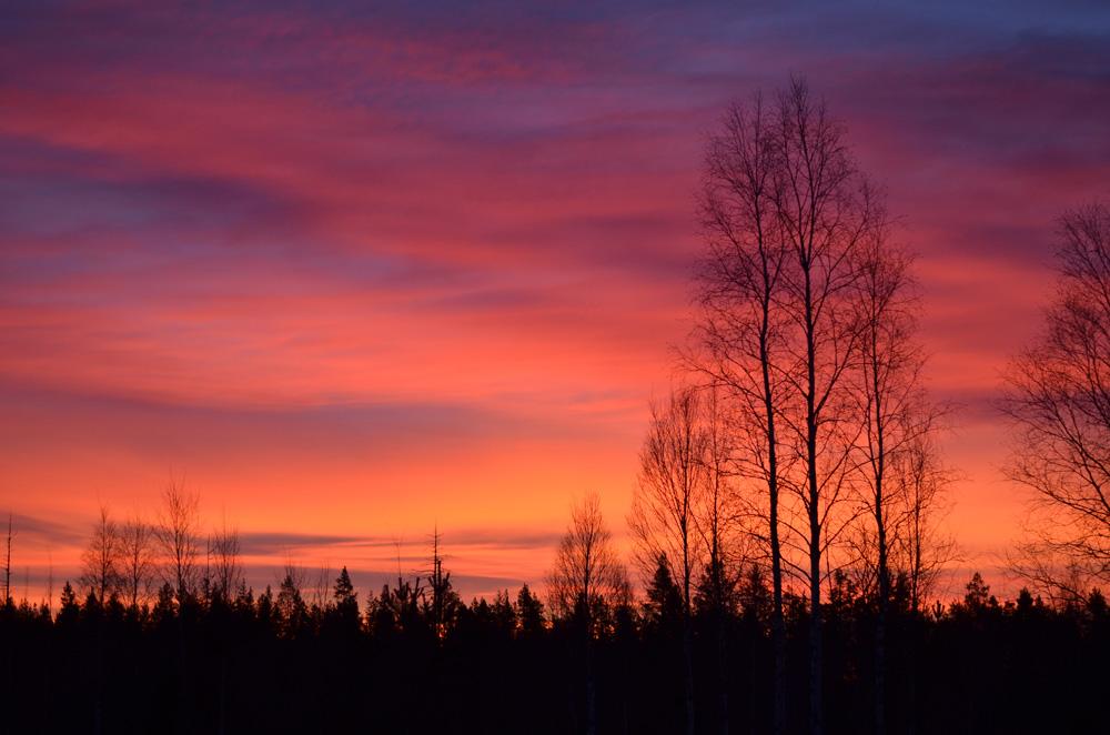 soluppgång december