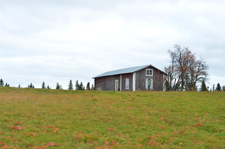 öde gård 1