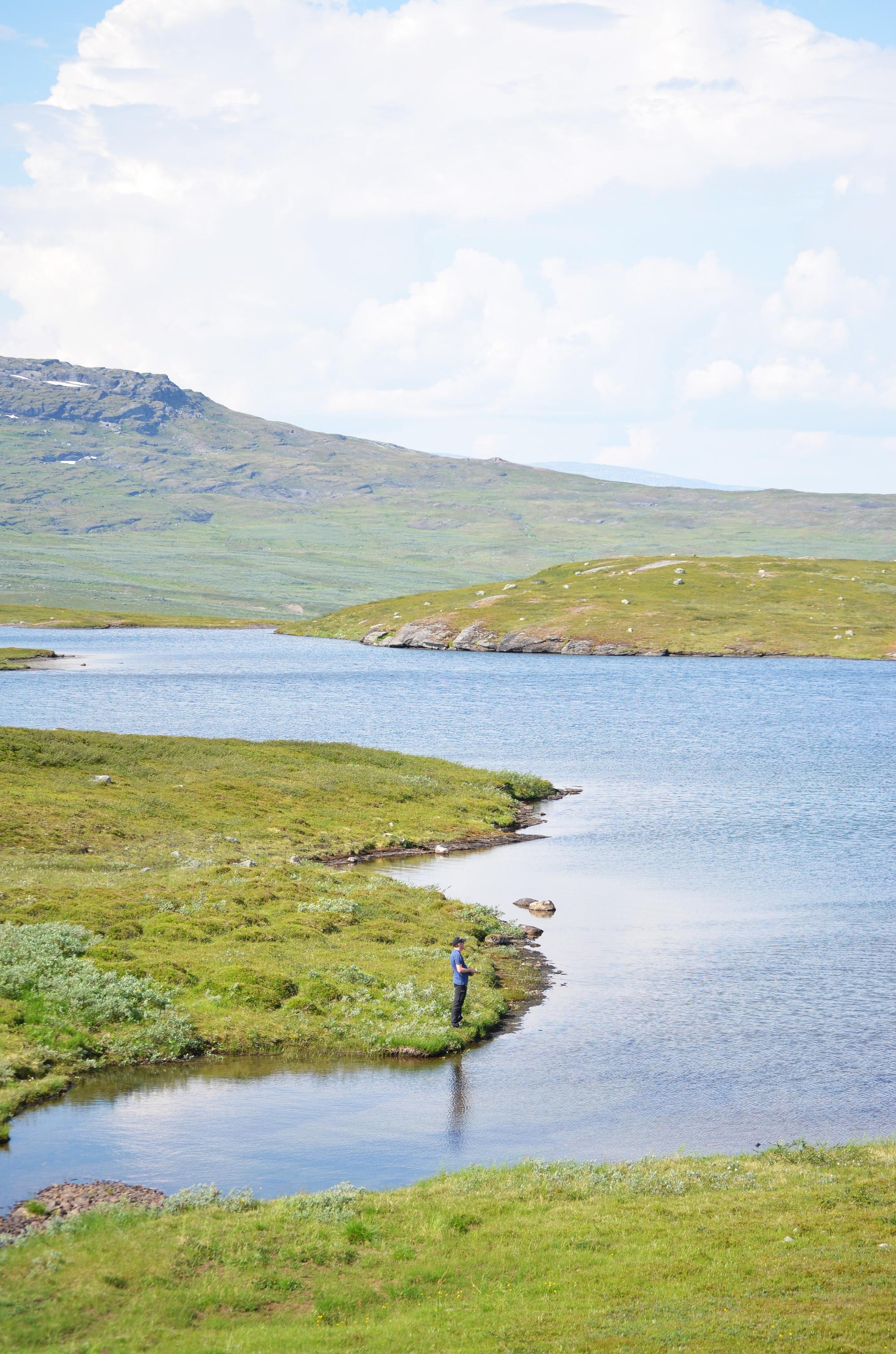 fiska i fjällsjö