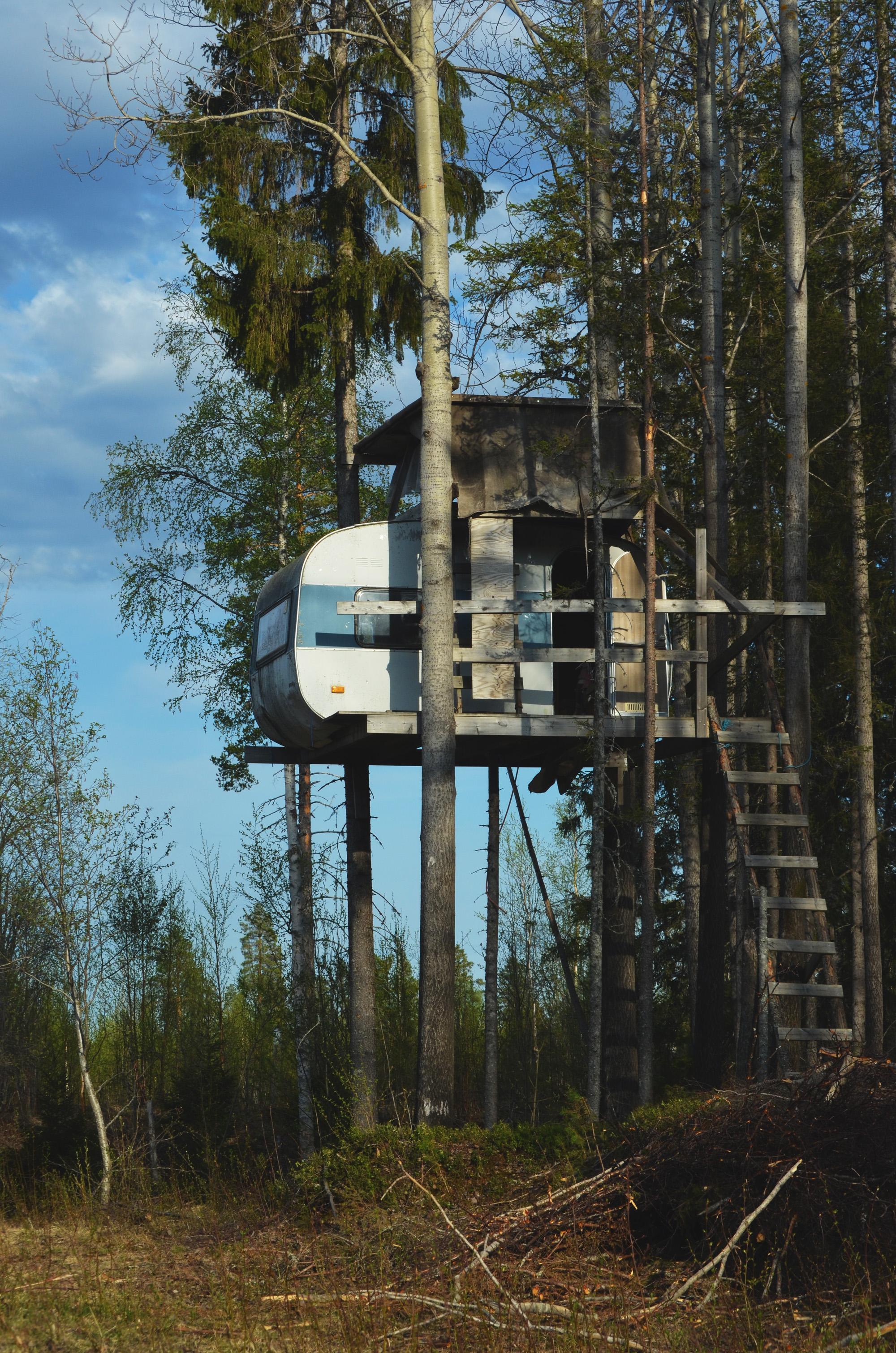 Husvagn i träd